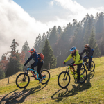 three people riding mountain bikes down a hill