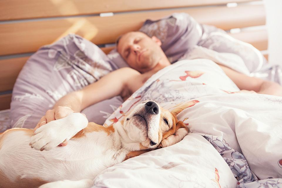 man sleeping with a dog